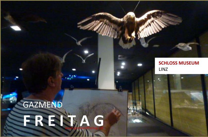 Im Schloss Museum Linz: Adler zeichnung
